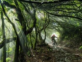 Bike Station La Palma